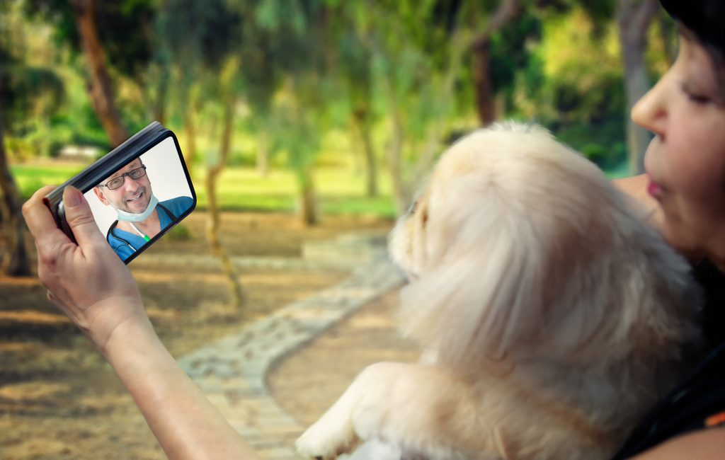How to Promote Your Texas Veterinary Practice in Houston