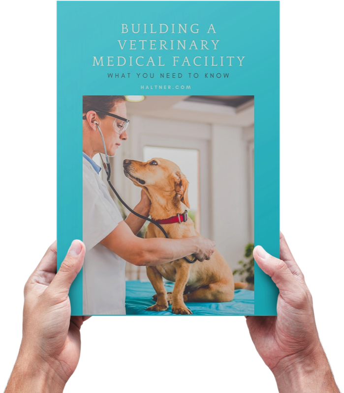 How to Build a Veterinarian Clinic Brand Guide